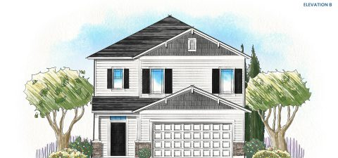 Dream Finders Home Stockton Elevation B at Tributary