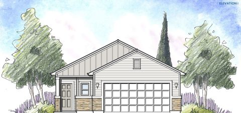 Dream Finders Home Avondale Elevation  i at Tributary